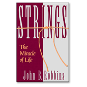 Strings - Book Cover